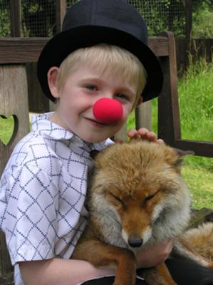 flukey with a rescued fox