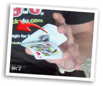 three card monte scam