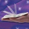 self folding bill